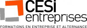 logo_cesientreprises_680